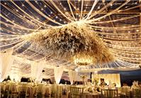 Wedding Venues. white drapes
