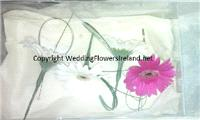 Flowers. Gerbera buttonholes. Wedding packages available.