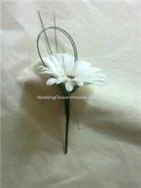 Flowers. Gerbera buttonhole. Wedding packages available.