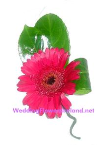 Flowers. Gerbera buttonhole (with twisted stem and folded leaf detail). Wedding packages available.