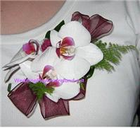 Flowers. Mother's Orchid Corsage (with matching organza ribbon). Wedding packages available.