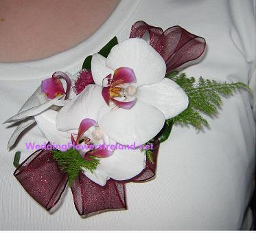 Flowers, Mother's Orchid Corsage (with matching organza ribbon). Wedding packages available.