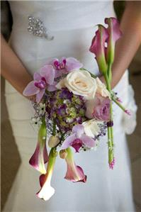Flowers. Bridal bouquet. Large range of fresh cut flowers and plants available.