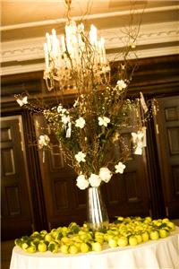 Flowers. Wedding venue flower and fruit arrangement. Large range of fresh cut flowers and plants ava