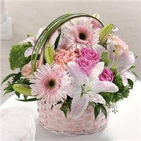 Flowers. Basket Of Love. Beautiful flowers ready arranged in a suitable basket. Blooms may vary slig