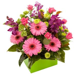 Flowers, Exciting Blooms Of Colour. A hand tie of colourful blooms.
