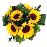 Flowers. Sunflowers. Please note that sunflowers are only available at certain times of the year.