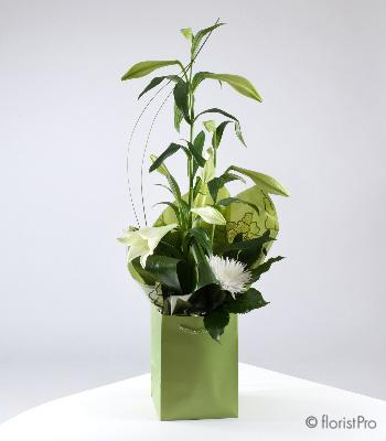 Flowers, Lily. An arrangement of lilies, foliage and chrysanthemums in white and green shades. Only