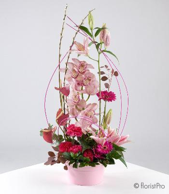Flowers, Caprice. Orchids, gerbera and anthurium arrangement by Neil Whitakker. Only available in ou
