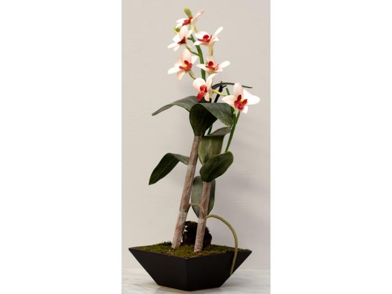 Flowers, Pink and cream Dendrobium arrangement in Porcelain Black pot. Size: H 44cm W 33cm.