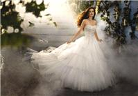 Bridal Dresses. Cinderella Platinum wedding dress. Satin and tulle gown. Comes in ivory/metallic and