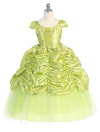 https://www.paraprinting.com/green/3523-lime-taffeta-embroidered-cinderella-dress-style-d596.html
