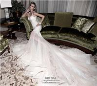 https://www.gownfolds.com/galia-lahav-wedding-dresses-and-bridal-gowns/36-galia-lahav-lana.html