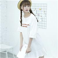 Casual Oversized Embroidery Scoop Neck Short Sleeves Alphabet Summer Dress - Lafannie Fashion Shop